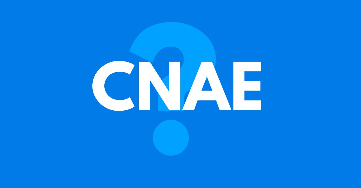 You are currently viewing O que é CNAE? Saiba mais sobre essa classificação